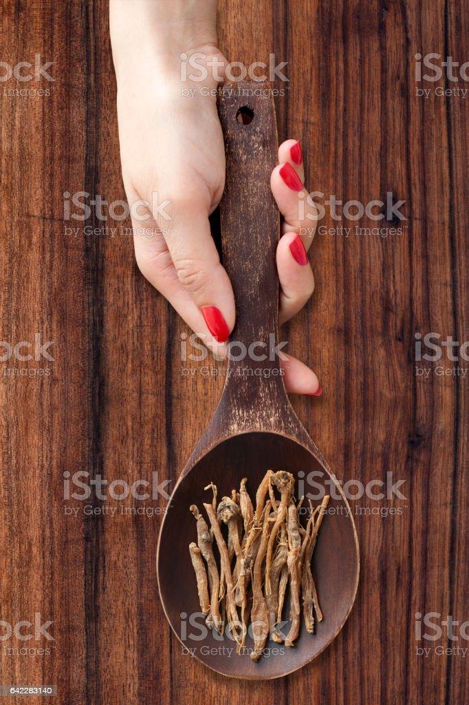 Ginseng root stock photo