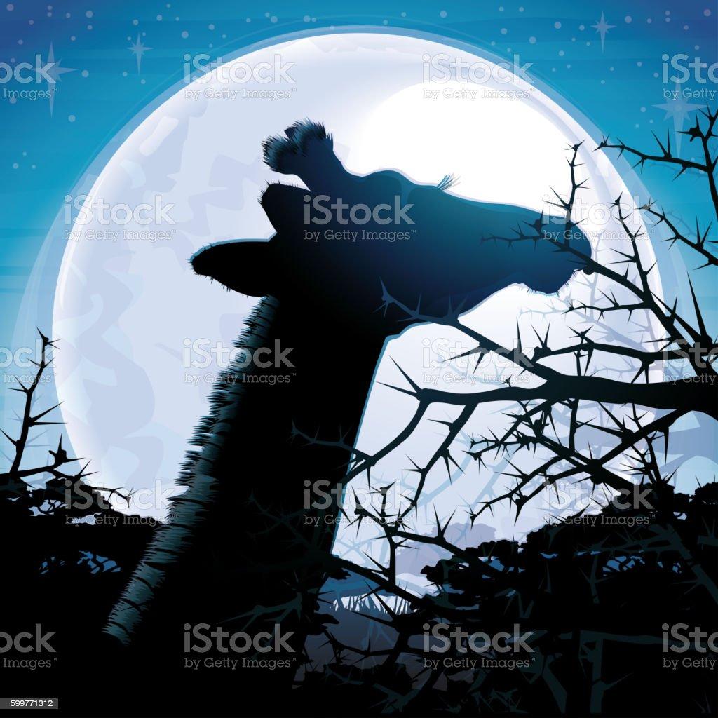 Giraffe silhouette safari in savanna against blue moon stock photo