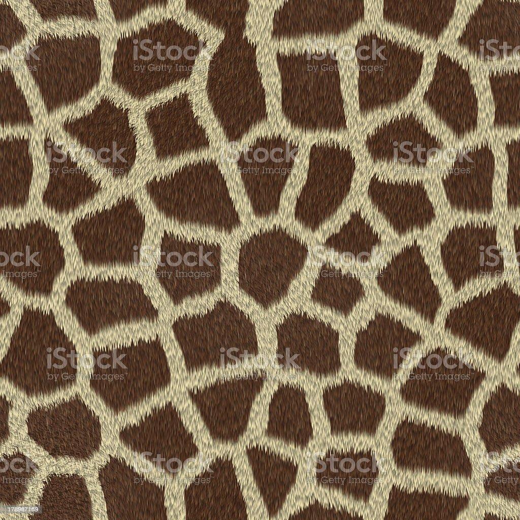 Giraffe skin print royalty-free stock photo