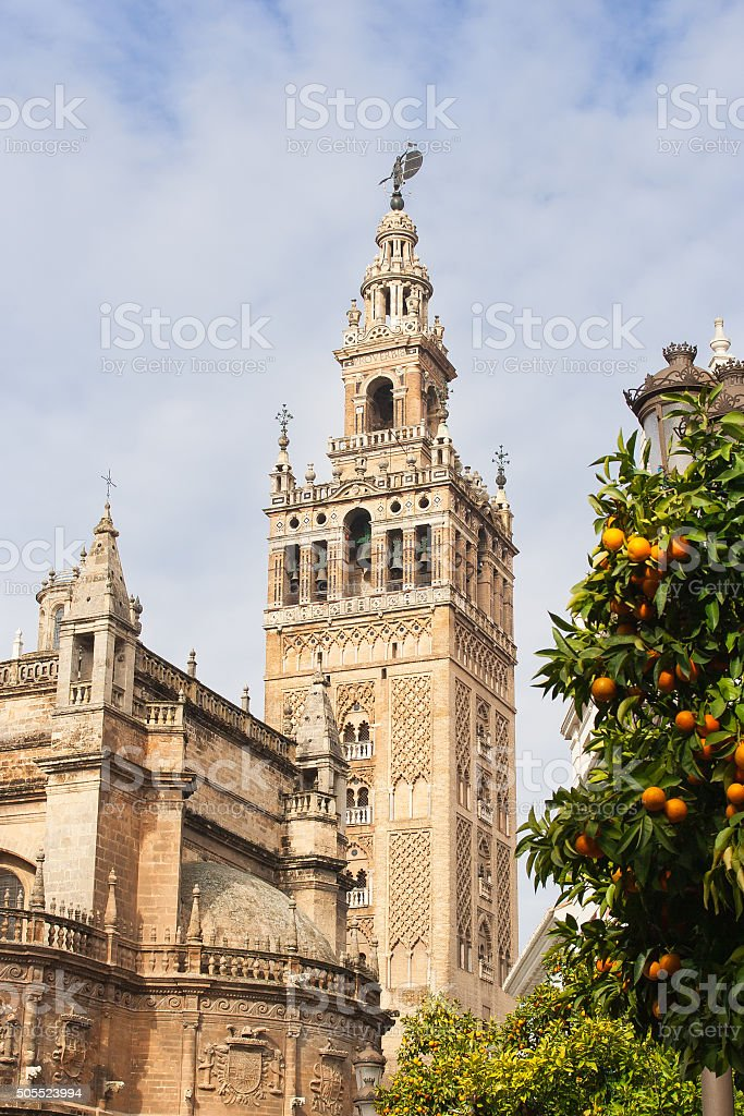 Giralda bell tower of the Cathedral of Seville and oranges stock photo