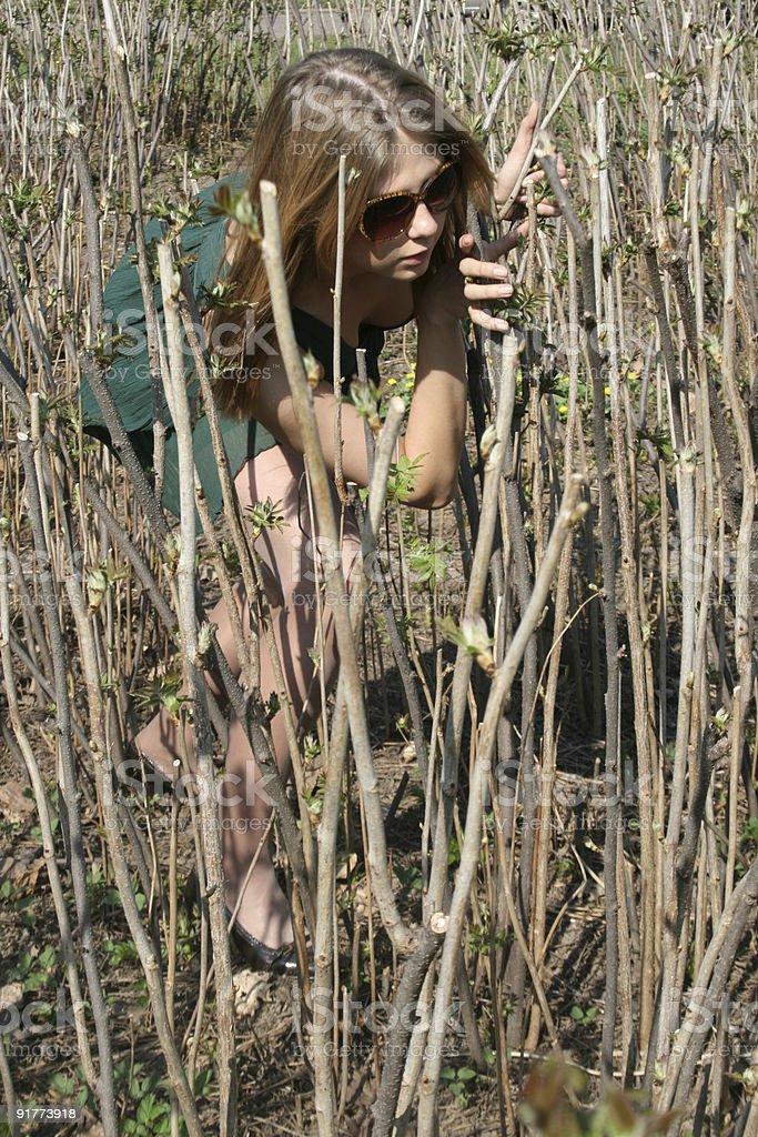 Girl among bushes royalty-free stock photo