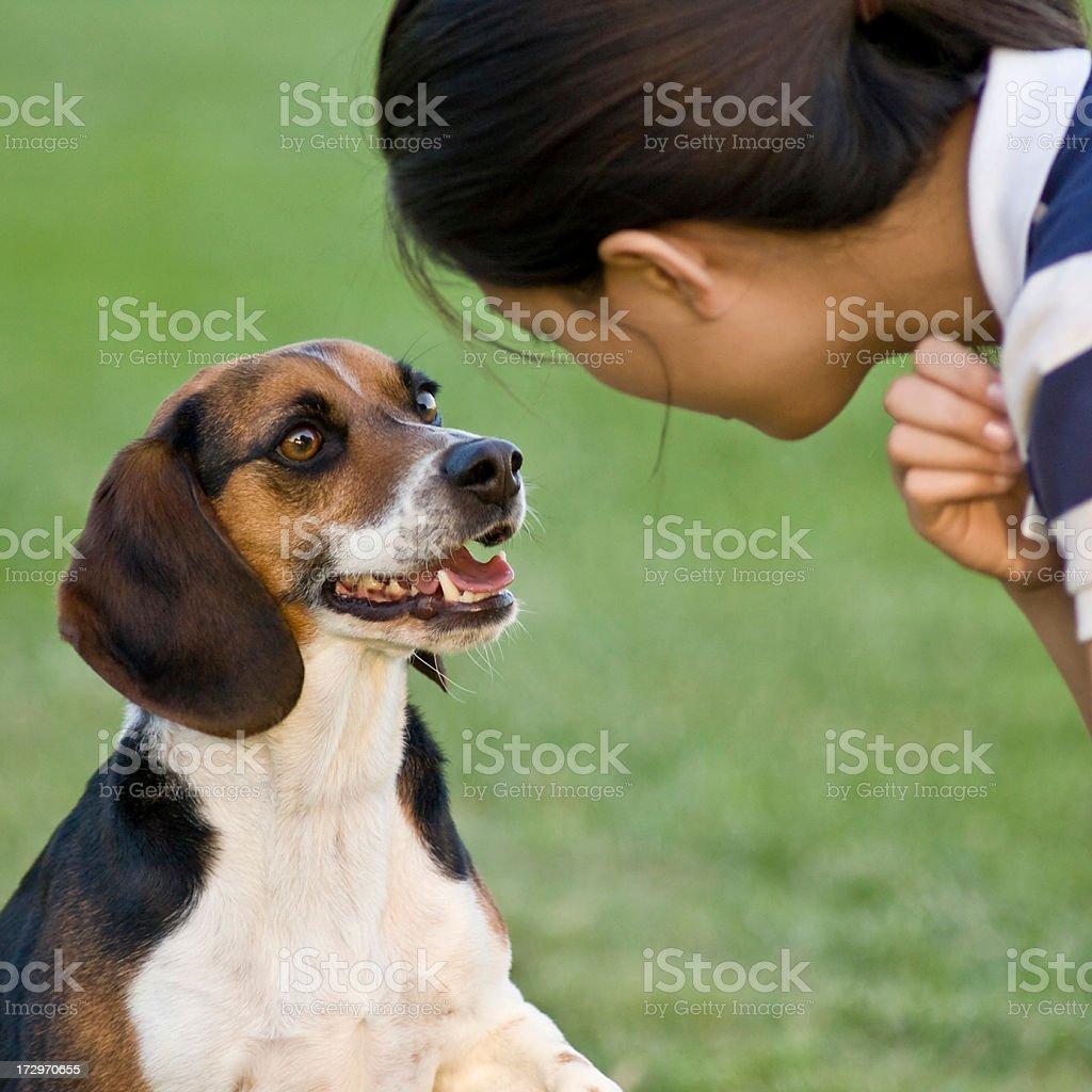 girl and beagle royalty-free stock photo