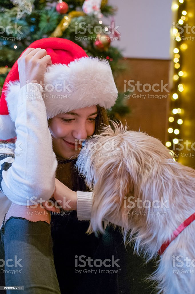 Girl and dog laying down by the christmas tree stock photo