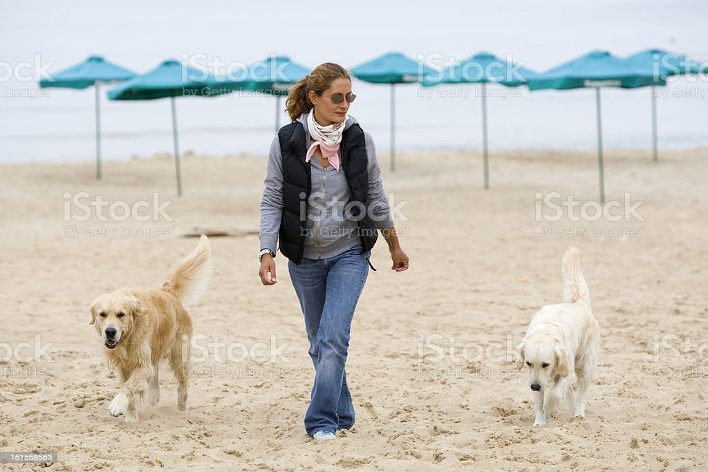 Girl and dogs royalty-free stock photo