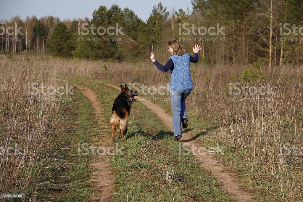 Girl and German shepherd dog on the field stock photo