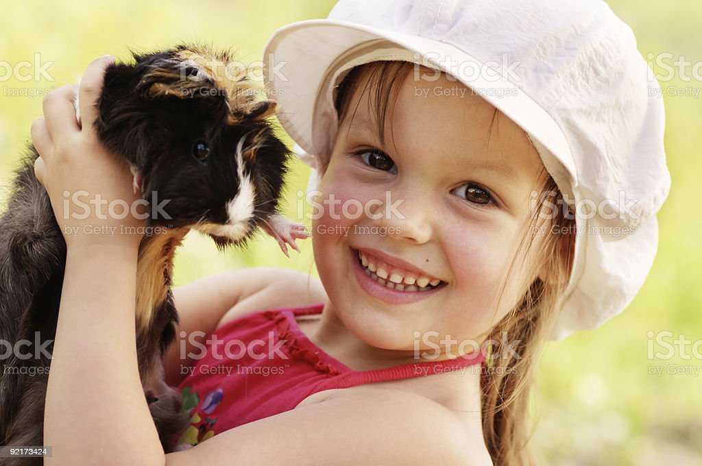 Girl and guinea-pig. stock photo