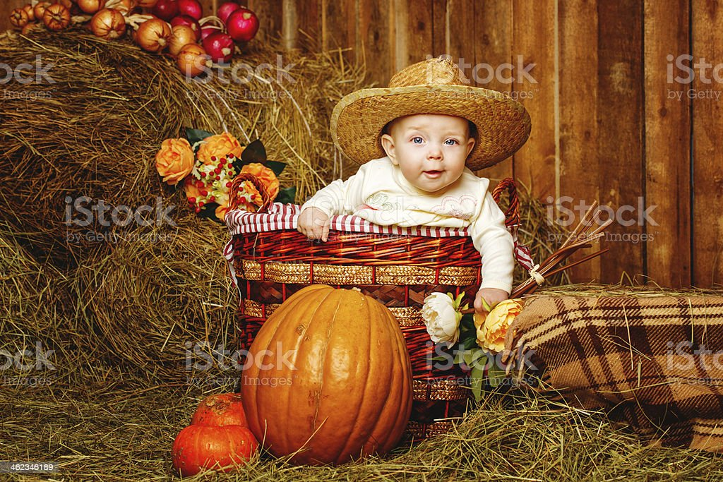 Girl and harvest pumpkins stock photo
