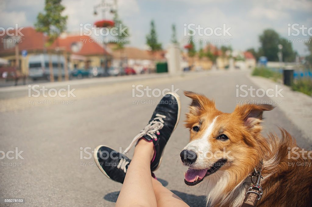girl and her dog traveling stock photo