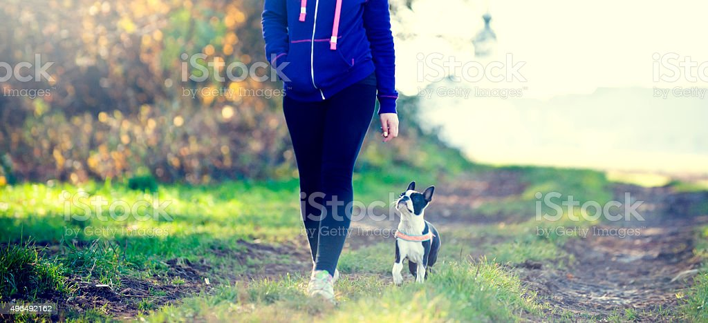 Girl and her dog walking in a park stock photo