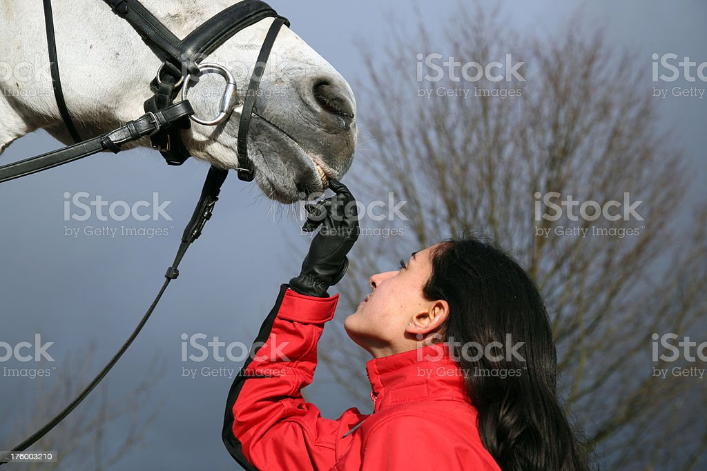Girl and her horse 5 stock photo
