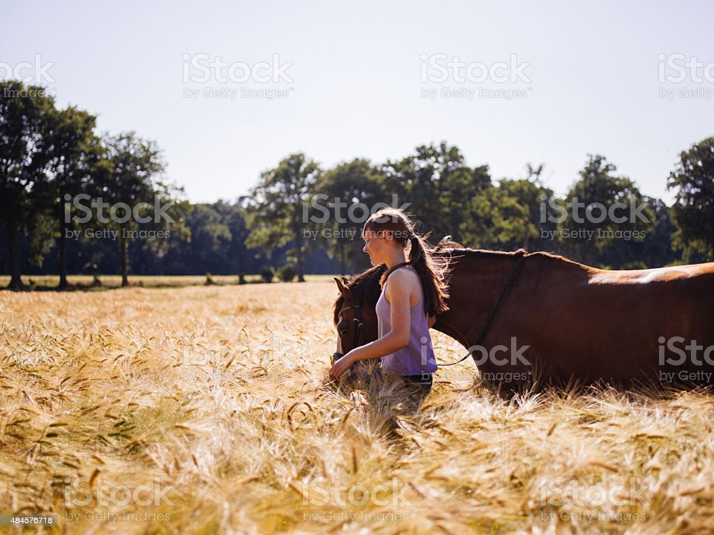 Girl and her horse walking through a sunlit wheat field stock photo