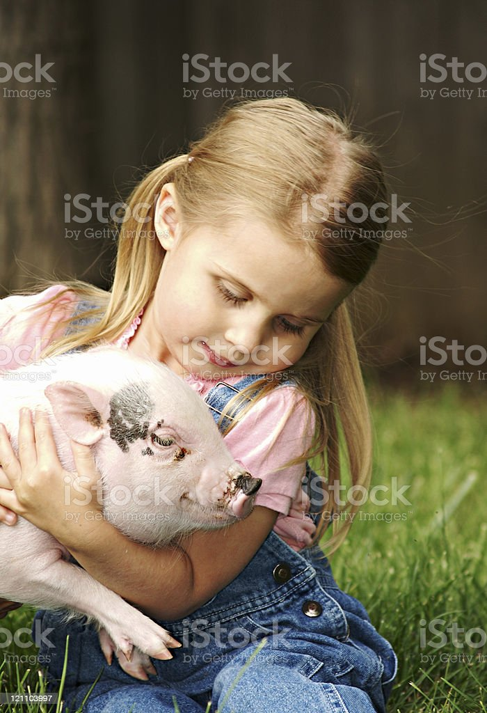 Girl and her Pig royalty-free stock photo