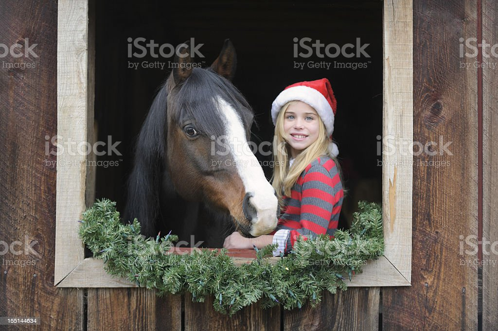 Girl and Horse in Barn Window with Christmas Santa Hats stock photo