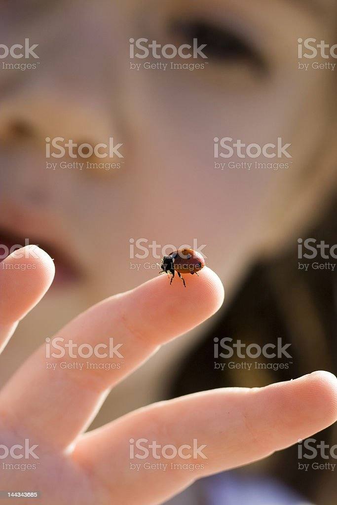 Girl and ladybug royalty-free stock photo