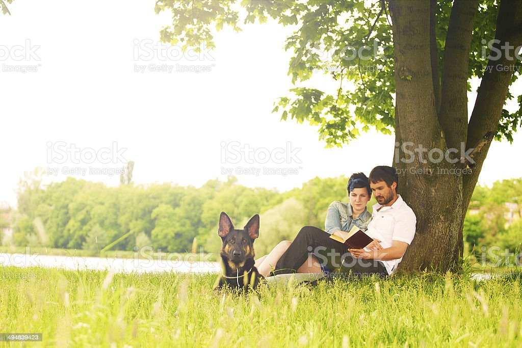 girl and man with german shepherd puppy education stock photo