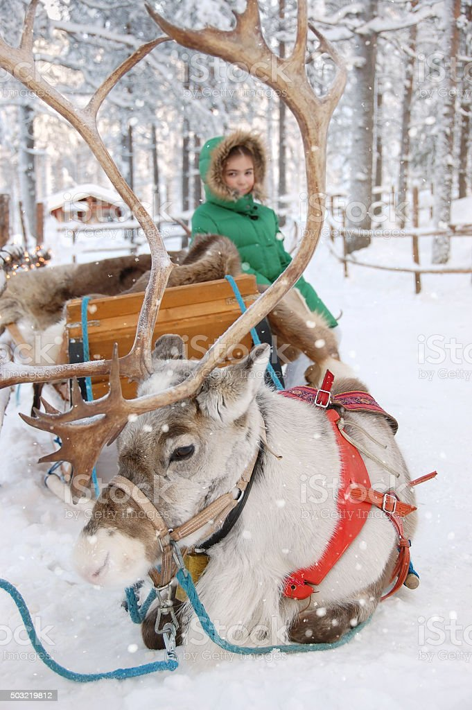 Girl and Reindeer Sleigh stock photo