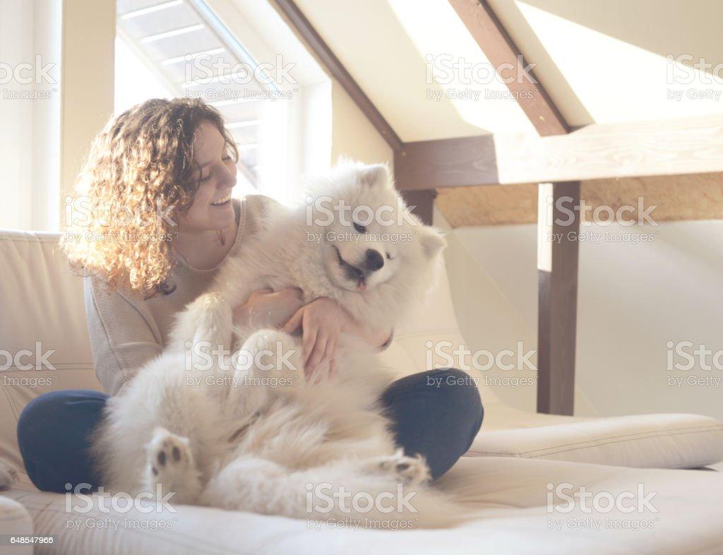 Girl and Samoyed dog stock photo