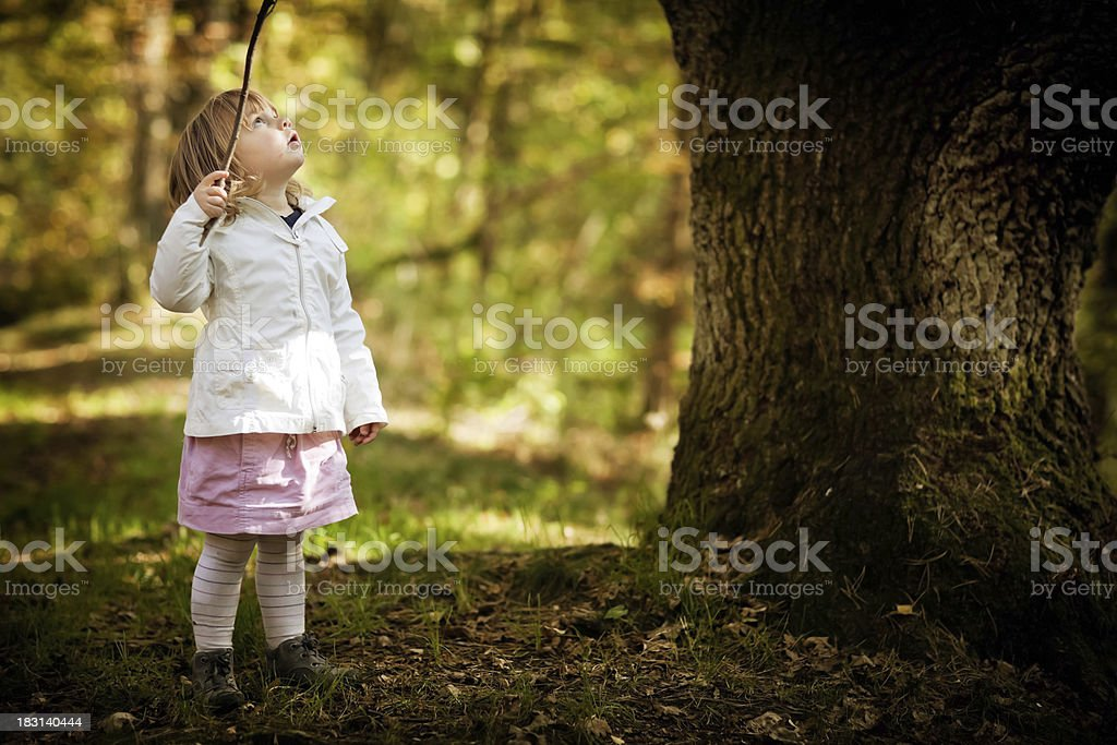 Girl and the Tree royalty-free stock photo