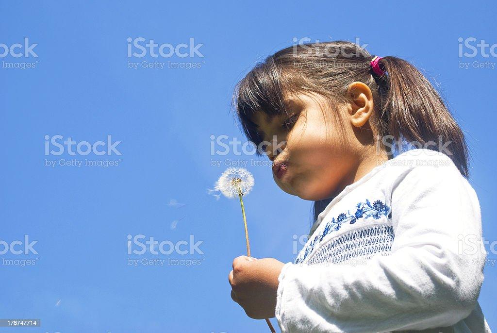 Girl blowing dandelion stock photo