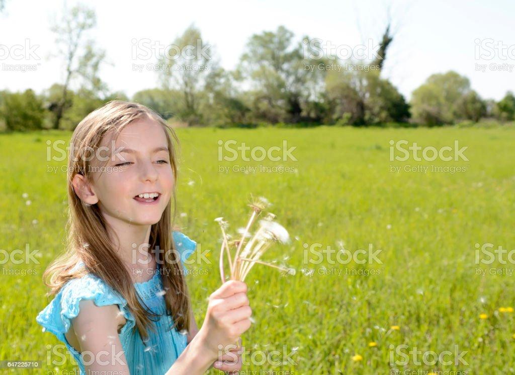 girl blowing dandelions stock photo