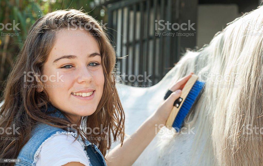 Girl Brushing his horse stock photo