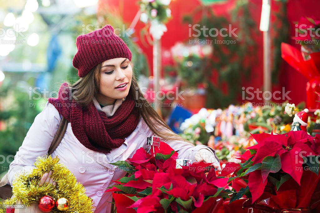 Girl buying floral compositions at Christmas fair stock photo