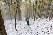 Girl climbing a snowy forest trail. Tourism
