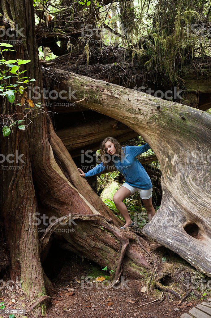 Girl climbs on gnarly tree in rainforest stock photo