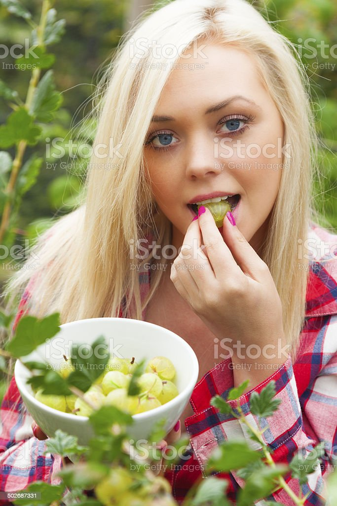 Girl Collecting Summer Fruit - Gooseberries stock photo