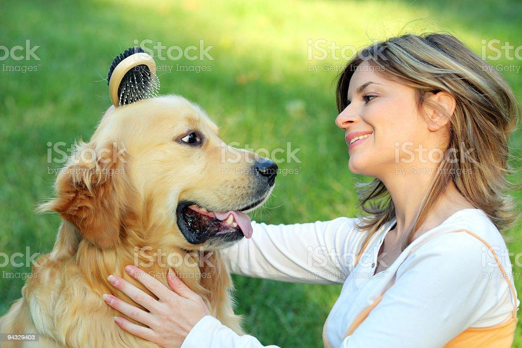 Girl combing her cute dog. stock photo