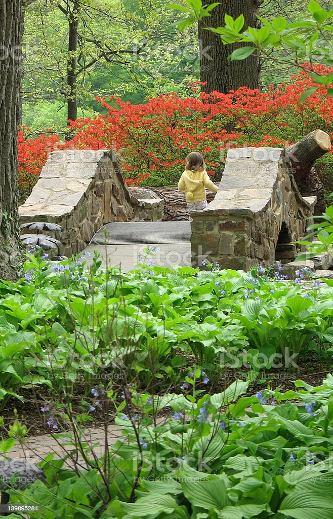 Girl crossing stone bridge royalty-free stock photo