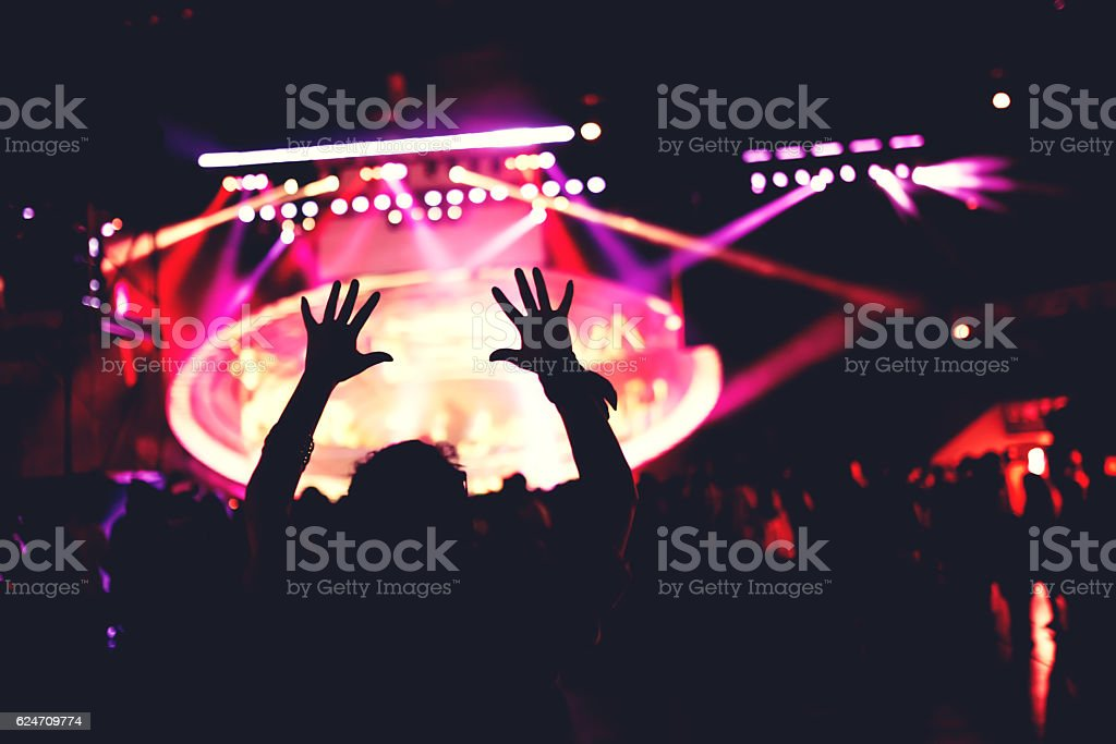 girl dancing silhouette. Live concert or music festival with crowd stock photo