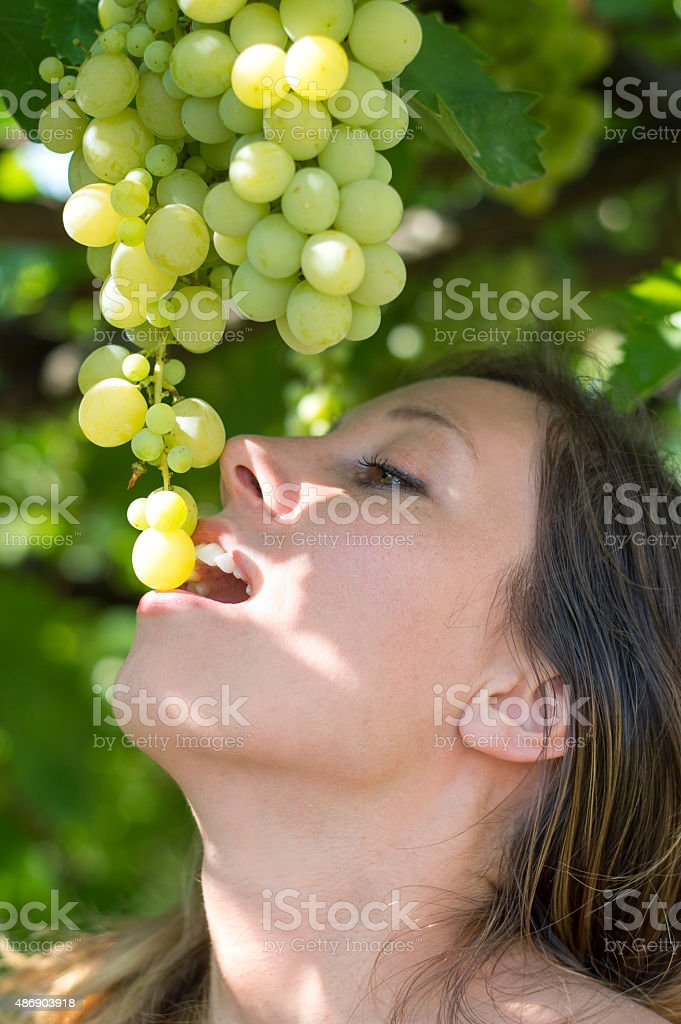 Girl eating grapes directly from the tree stock photo