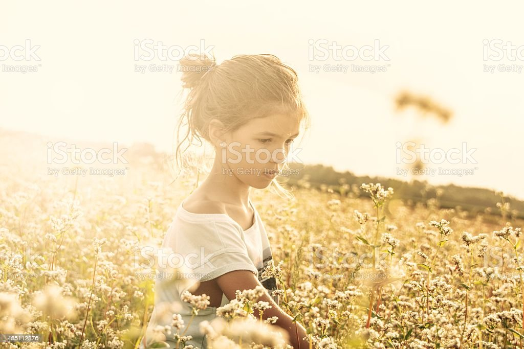 Girl enjoying in buckwheat field stock photo