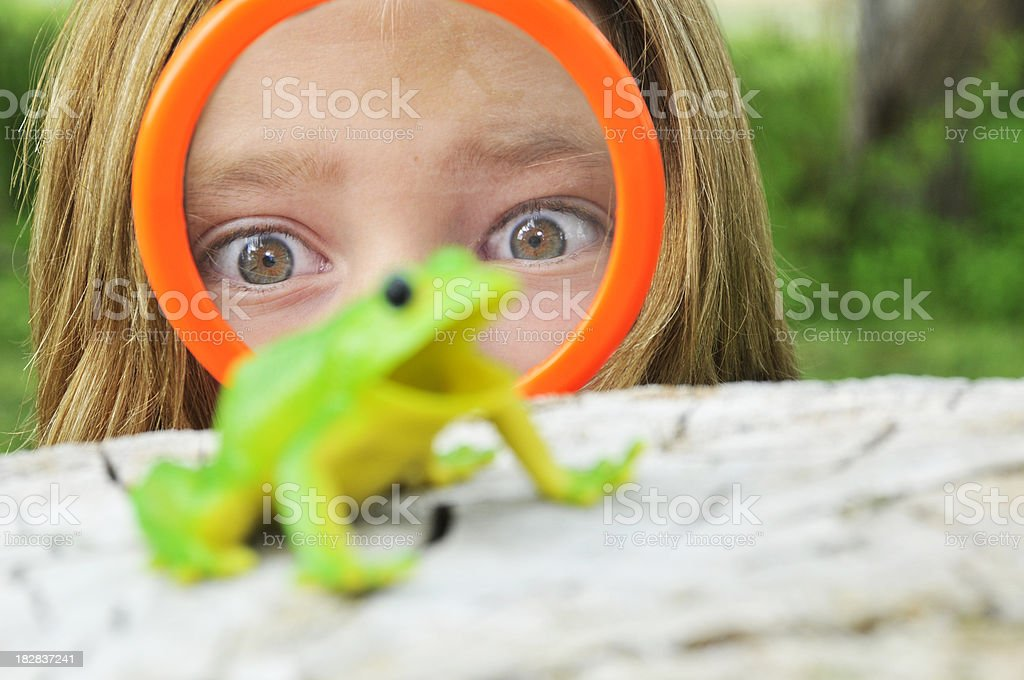 Girl examines frog with magnifying glass royalty-free stock photo