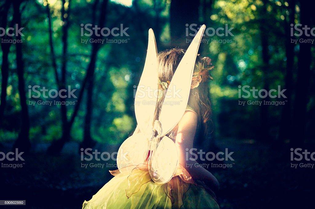 girl fairy in woods lovely light stock photo