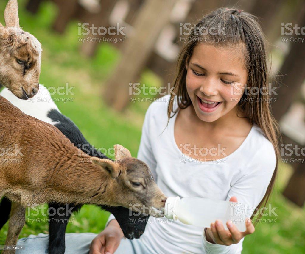 Girl feeding a baby stock photo