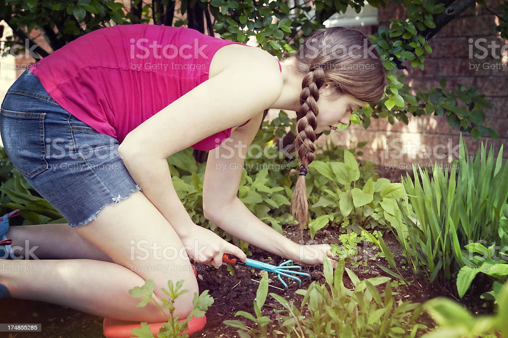 Girl gardening removing weeds from a flower bed royalty-free stock photo