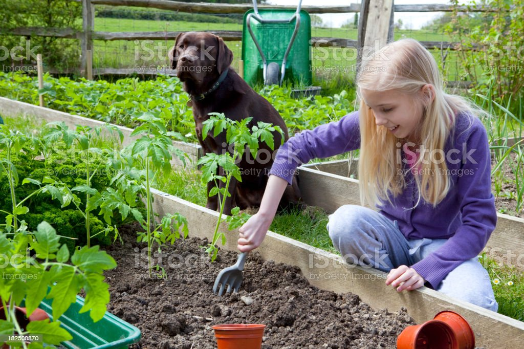 Girl Gardening With Dog royalty-free stock photo