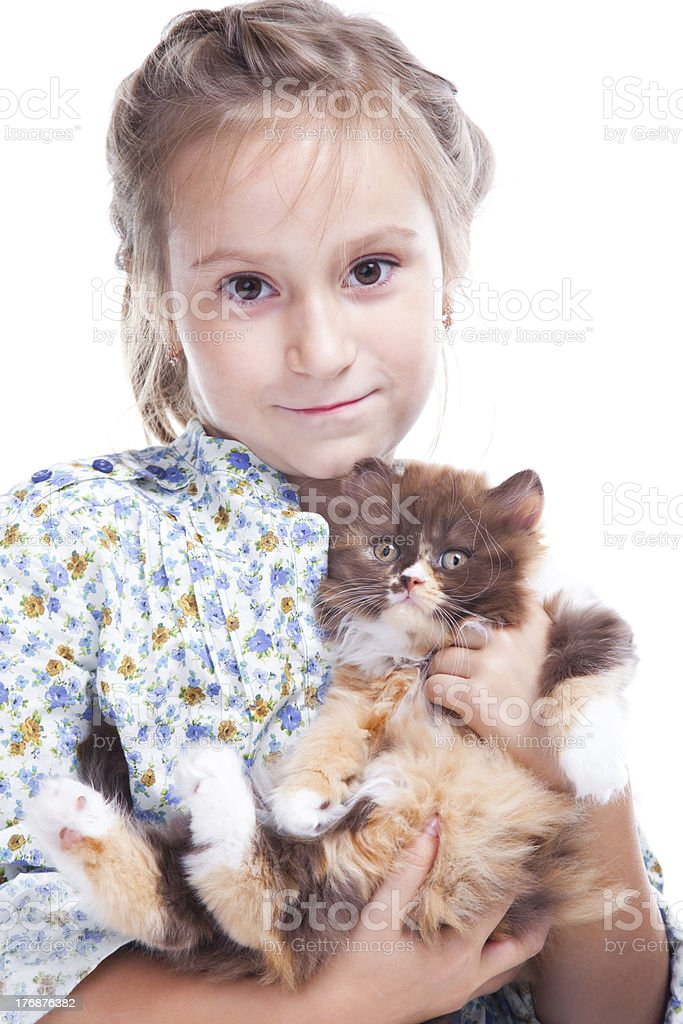 Girl gently embracing tortoise British kitten royalty-free stock photo
