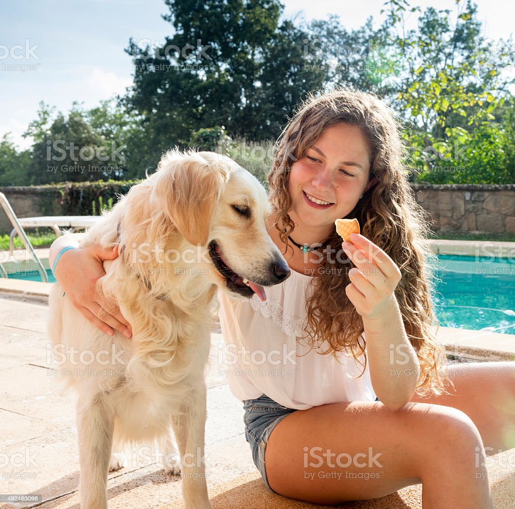 Girl giving harng her cookie with a dog stock photo