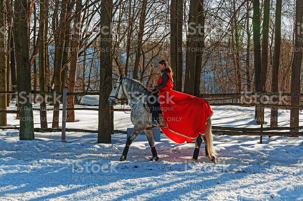 Girl goes on a grey horse to ranch. royalty-free stock photo