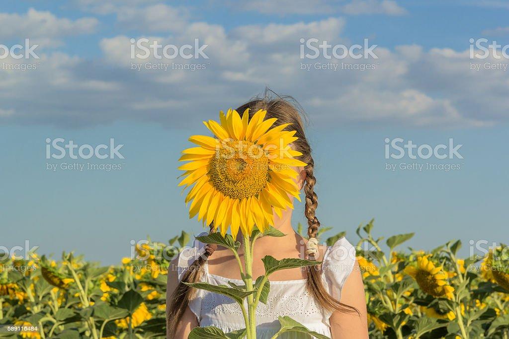 Girl hiding behind yellow flower sunflower stock photo