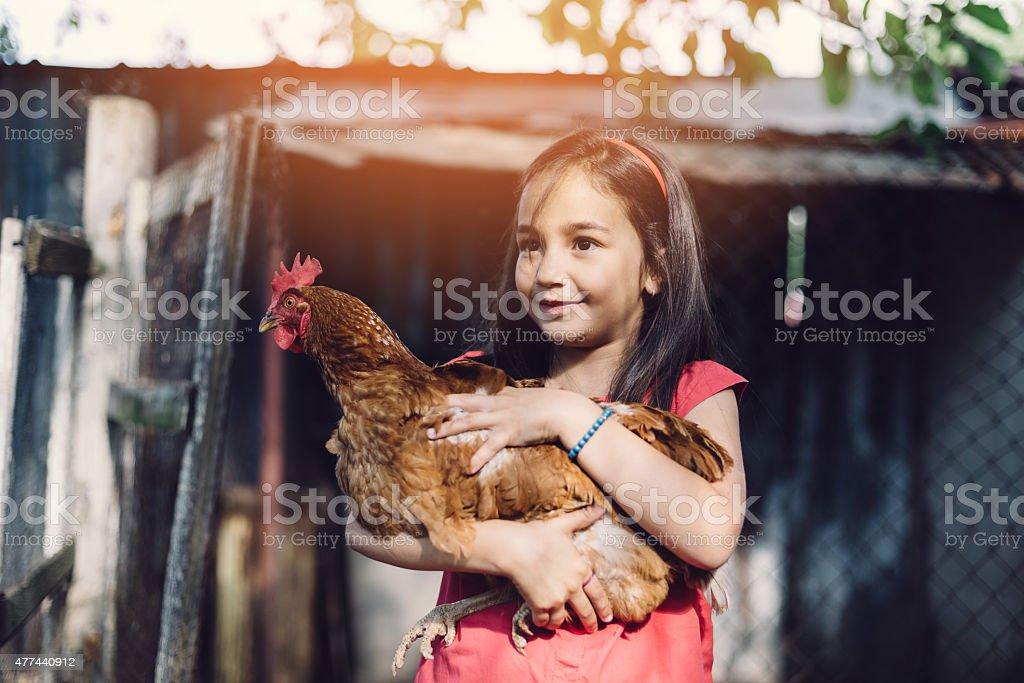 Girl holding a hen stock photo