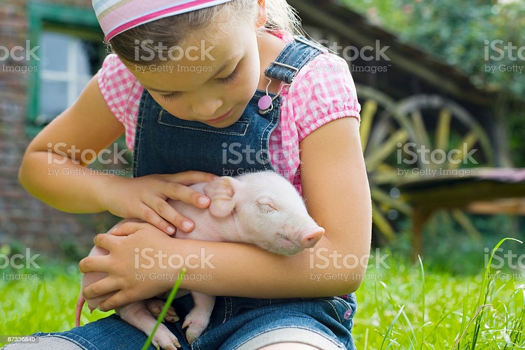 A girl holding a piglet royalty-free stock photo