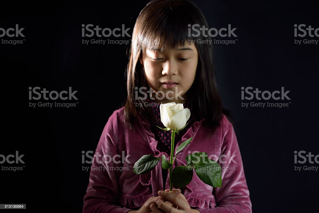 Girl holding a white rose stock photo