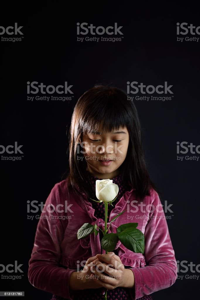 Girl holding a white rose stock photo