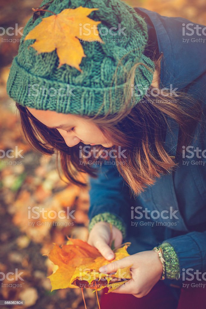 Girl holding autumn leaves in her hands stock photo