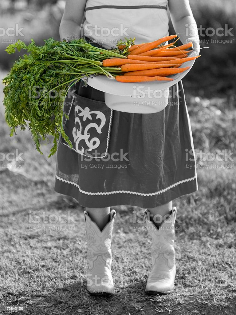 Girl Holding Carrots in Cowboy Boots stock photo