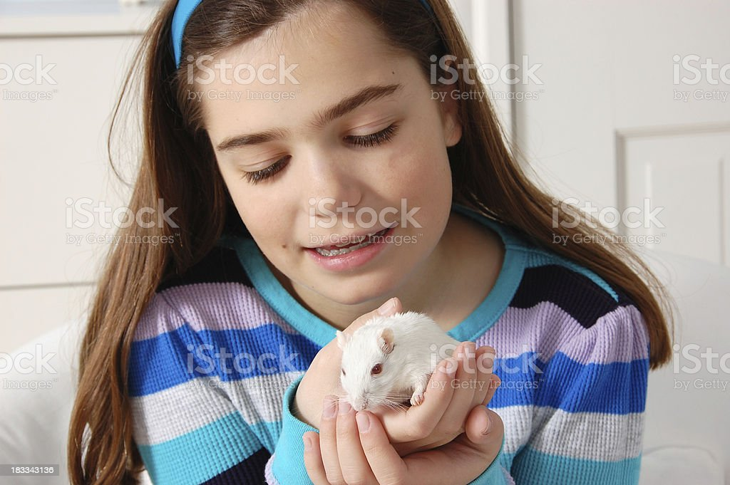 Girl Holding Gerbil stock photo